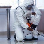 شركة مكافحة حشرات بالدمام 0509493294  رش مبيدات